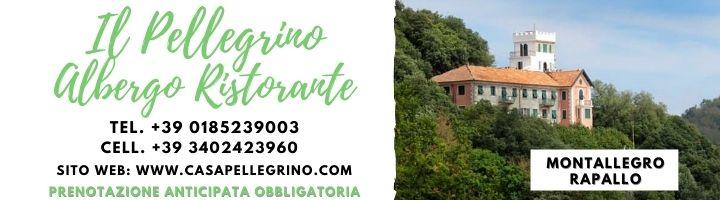 Albergo Ristorante Il Pellegrino - Montallegro