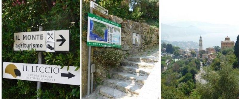 San Lorenzo della Costa Agriturismo il Monte
